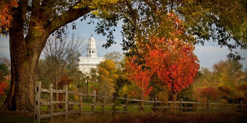 Picture of Nauvoo Farm With Red Leaves